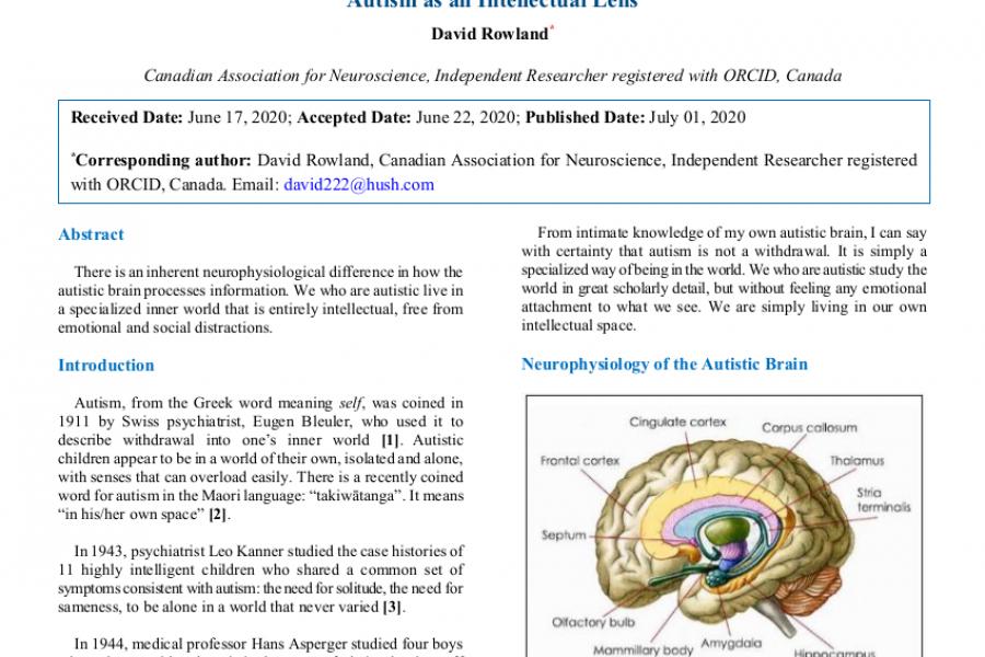 Autism as an Intellectual Lens