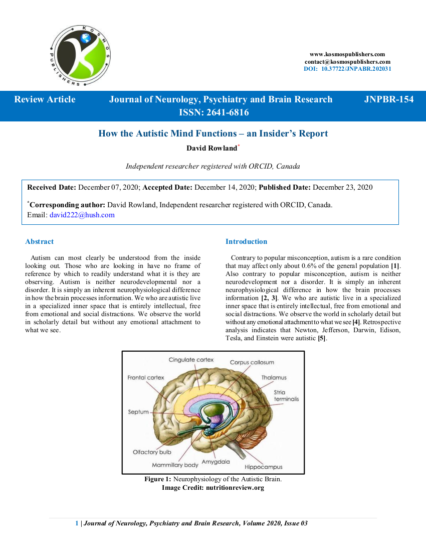 How the Autistic Mind Functions – an Insider's Report